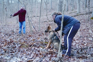 Puppy gunshot K-9 Trailing