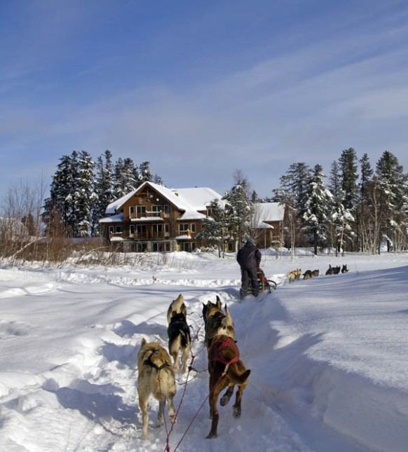 It's fun to join friends for a day of dog sledding through the winter countryside.