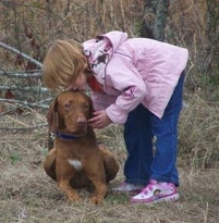 Little girl kissing a dog. Copyright Nancy Edmund, Solaris Vizslas.